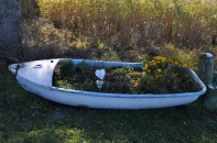 """Miss you Moe"" boat planter outside the Pink Cottage on Middle Head (Cottage 26)."