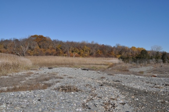 Natural systems: West Head marsh area