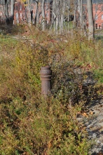 Small-scale features: remnants of a decorative lamp post on Officers Row