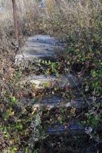 Vegetation: overgrown vegetation taking over the steps up to Officers Row