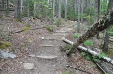 A series of stone checks that prevent erosion.